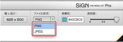 4_1_05_04.jpg